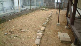 庭の除草 緑化センターのサムネイル