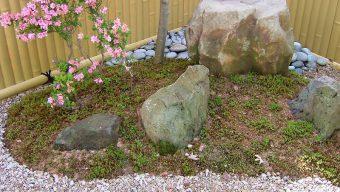 苔庭 緑化センターのサムネイル